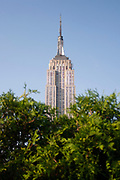 Rooftop garden bar at 230 5th Avenue, a busy evening of drinks for New Yorkers on 23rd May 2007 in New York City, United States. This popular place has extraordinary view of the New York skyline and Empire State Building.