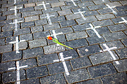 On Monday the 22nd of March 25,000 white crosses appeared in the Old Town Square in Prague. Each of these crosses is said to symbolize the death of a person from Covid-19. The number of victims since the beginning of the epidemic in the Czech Republic has already exceeded 25000.