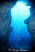 diver explores underwater catacombs of lava tubes, The Caverns, aka Sheraton Caverns, Poipu, Kauai, Hawaii, USA ( Pacific ) MR 290