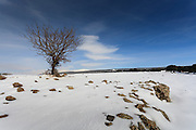 Snowscape. Photographed in the Golan Heights, Israel
