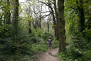 People out exercising responsibly and applying social distancing in woodland in Canon Hill Park as Coronavirus is felt on a local level on 12th April 2020 in Birmingham, England, United Kingdom. People here, in what is normally an incredibly busy urban park are mainly abiding the stay at home message, and those out exercising are doing so with care. Coronavirus or Covid-19 is a new respiratory illness that has not previously been seen in humans. While much or Europe has been placed into lockdown, the UK government has announced more stringent rules as part of their long term strategy, and in particular social distancing.