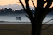 Shooting station overlooking the salt marsh at Arne from Middlebere.as the mist rolls in. Dorset, UK.