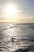 Surfers gaan de zee in.    Surfers go into the sea