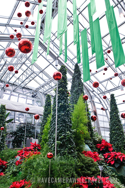 Trees are decorated for Christmas inside Montreal's Botanical Garden, one of the world's largest indoor botanical gardens featuring a range of different environments from orchids to spices to cacti.