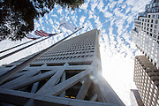 De Transamericapiramide is de hoogste wolkenkrabber van San Francisco. De Financial District in San Francisco waar veel hoofdkantoren van banken en grote ondernemingen zijn gevestigd. De Amerikaanse stad San Francisco aan de westkust is een van de grootste steden in Amerika en kenmerkt zich door de steile heuvels in de stad.<br /> <br /> The Transamerica Piramid is the largest sky scraper in San Francisco. The Financial District of San Francisco where headquarters of banks and financial companies are located. The US city of San Francisco on the west coast is one of the largest cities in America and is characterized by the steep hills in the city.