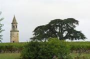 The landmark tower in the vineyards. Chateau la Tour de By, Medoc, Bordeaux, France