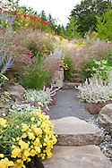 Drought tolerant plantings on the hillside behind the outdoor fireplace.
