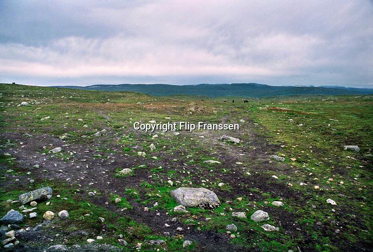 Noorwegen, Sognefjord, 6-8-2003Landschap in Noorwegen . Hardangervidda nationaal park . Hoogvlakte met gletsjers .Foto: Flip Franssen