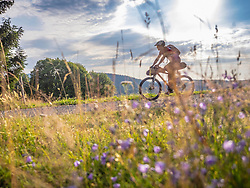 Mountain biker riding on hill near Todtnauberg, Baden-Wuerttemberg, Germany