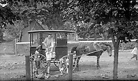 The Icecream Man - early 1900's