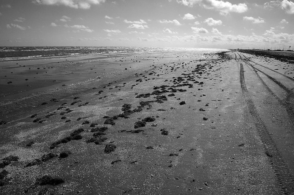 Beach Landscape, Holly Beach, LA