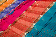 colourful saris on display on the banks of the Ganges, Varanasi, Uttar Pradesh, India. .