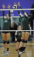 The Elyria Catholic High School Lady Panthers volleyball team advanced to the Regional Final with a win over Waterloo on November 4, 2010. © David Richard