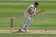 Essex County Cricket Club v Hampshire County Cricket Club 300413