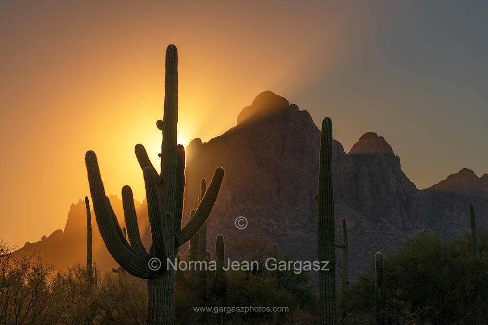 The sun sets on December 21, 2020, the Winter Solstice, at Ironwood Forest National Monument, Sonoran Desert, Arizona, USA.