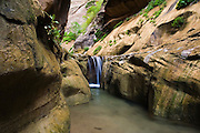 A small waterfall in Orderville Canyon, a beautiful side canyon of the Zion Narrows in Zion National Park, Utah.