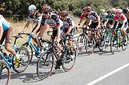 Daniel Martin (IRL - UAE Team Emirates), during the UCI World Tour, Tour of Spain (Vuelta) 2018, Stage 9, Talavera de la Reina - La Covatilla 200,8 km in Spain, on September 3rd, 2018 - Photo Luis Angel Gomez / BettiniPhoto / ProSportsImages / DPPI