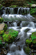Fern Spring, Yosemite Valley, Yosemite National Park (World Heritage Site), California