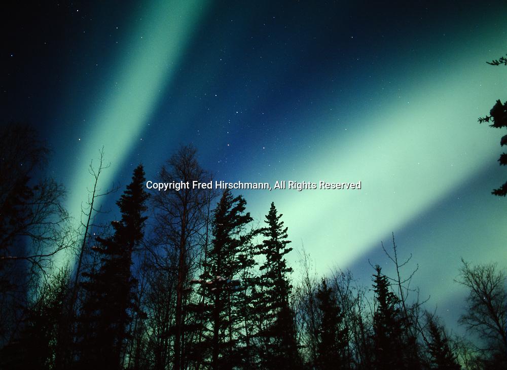 Bands of green aurora borealis above boreal forest near Cottonwood Creek in October of 2012, Matanuska Valley, Alaska.