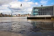 Cologne, Germany, February 4th. 2021, flood of the river Rhine, the Chocolate Museum.<br /> <br /> Koeln, Deutschland, 4. Februar 2021, Hochwasser des Rheins, das Schokoladenmuseum.