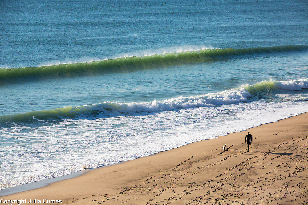 A surfer in wetsuit from behind carrying a surfboard at Whitecrest Beach in Wellfleet, MA