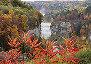 "From Inspiration Point, see Middle and Upper Genesee Falls amid the splendor of autumn leaf colors, at Letchworth State Park, near Portageville, New York, USA. In Letchworth State Park, renowned as the ""Grand Canyon of the East,"" the Genesee River roars northeast through a gorge over three major waterfalls between cliffs as high as 550 feet, surrounded by diverse forests which turn bright fall colors in the last three weeks of October. The large park stretches 17 miles between Portageville and Mount Morris in the state of New York, USA. Drive or hike to many scenic viewpoints along the west side of the gorge. The best walk is along Gorge Trail #1 above Portage Canyon from Lower Genesee Falls (70 ft high), to Inspiration Point, to Middle Genesee Falls (tallest, 107 ft), to Upper Genesee Falls (70 ft high). High above Upper Falls is the railroad trestle of Portageville Bridge, built in 1875, to be replaced 2015-2016. Geologic history: in the Devonian Period (360 to 420 million years ago), sediments from the ancestral Appalachian mountains eroded into an ancient inland sea and became the bedrock (mostly shales with some layers of limestone and sandstone plus marine fossils) now exposed in the gorge. Genesee River Gorge is very young, as it was cut after the last continental glacier diverted the river only 10,000 years ago. The native Seneca people were largely forced out after the American Revolutionary War, as they had been allies of the defeated British. Letchworth's huge campground has 270 generously-spaced electric sites. The image was stitched from 2 overlapping photos to increase depth of focus."