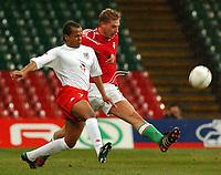 Fotball<br /> Privatlandskamp<br /> Wales v Ungarn<br /> 9. februar 2005<br /> Foto: Digitalsport<br /> NORWAY ONLY<br /> Wales' Robert Earnshaw and Hungary's Gabor Gyepes