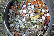 Compost bin organic food waste decomposing viewed from above