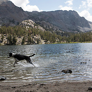 The Eastern Sierras near Mammoth and June Lakes is a outdoor playground that offers incredible fishing, hiking, paddle boarding and scenic wonders. Even for dogs!