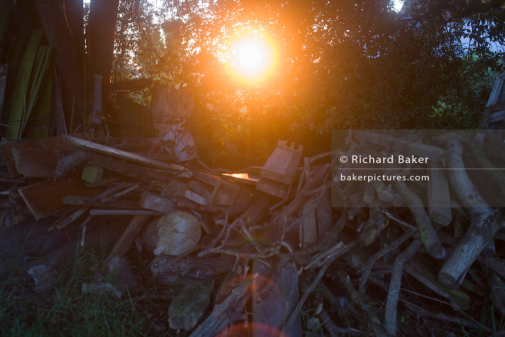 Late summer sunlight filters through a pile of old wood in a Suffolk farmyard.