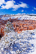 Fresh powder on rock formations in the Silent City, Bryce Canyon National Park, Utah USA