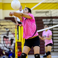 Tohatchi Cougar Shania Manygoats (14) bumps the ball over to the Newcomb Skyhawks Tuesday at Tohatchi High School.