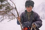 Mongolia - Nomad Migration
