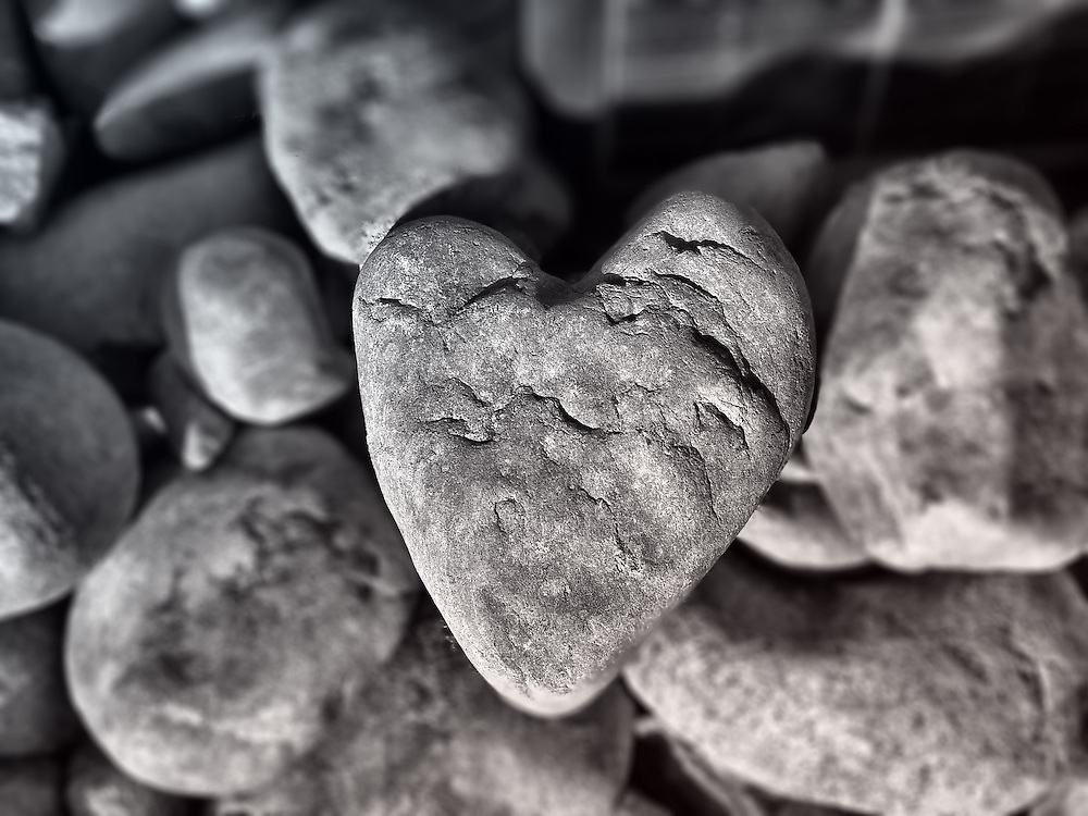 A heart shaped rock I found while exploring.