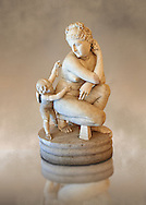 2nd century AD Roman marble sculpture of Aphrodite (Venus), 'Dresden Capitoline Type, copied from a Bronze Hellanistic original from the mid 3rd century BC  attributed to the Greek sculptor Doldalsas of Bethynia,  inv 6293, Farnese Collection - Naples Museum of Archaeology, Italy ..<br /> <br /> If you prefer to buy from our ALAMY STOCK LIBRARY page at https://www.alamy.com/portfolio/paul-williams-funkystock/greco-roman-sculptures.html . Type -    Naples    - into LOWER SEARCH WITHIN GALLERY box - Refine search by adding a subject, place, background colour, museum etc.<br /> <br /> Visit our ROMAN WORLD PHOTO COLLECTIONS for more photos to download or buy as wall art prints https://funkystock.photoshelter.com/gallery-collection/The-Romans-Art-Artefacts-Antiquities-Historic-Sites-Pictures-Images/C0000r2uLJJo9_s0