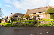 Attractive traditional thatched cottages in village of Woodborough, Wiltshire, England, UK