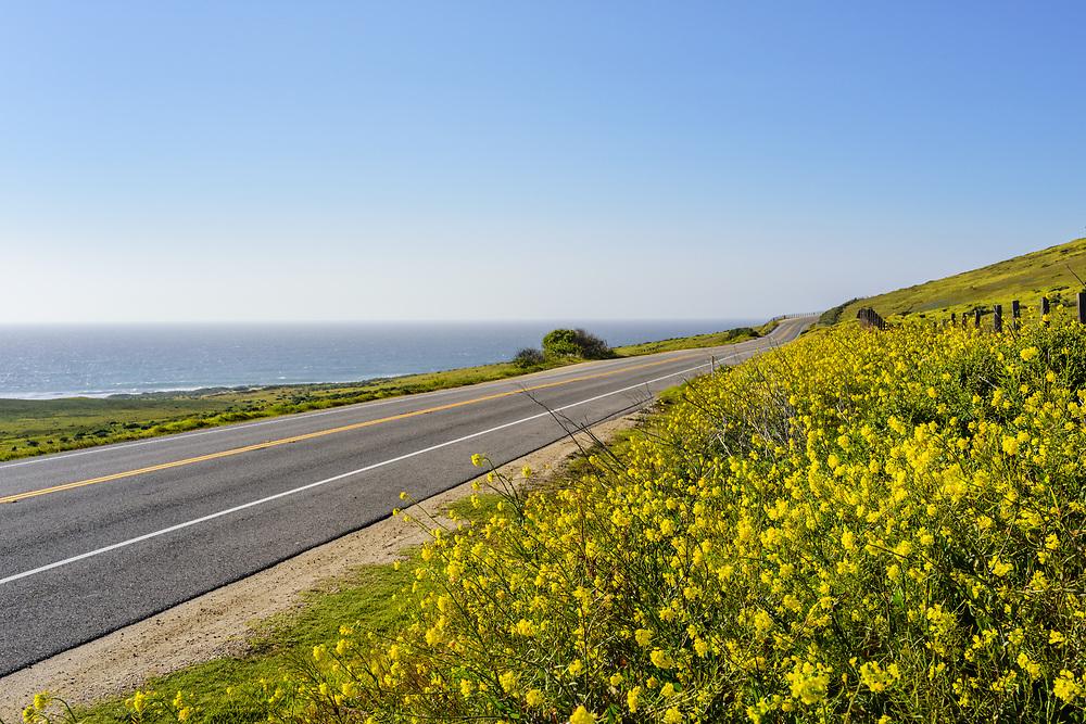 Pacific Coast Highway, California, Big Sur Area