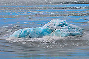 Floating Ice from Hubbard Glacier In The Wrangell St Elias National Park,