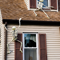 """Skeletons climb up the outside of Matthew McKee's house, in Dedham MA. It is part of the ever growing collection of hand made, customized and moded Halloween decorations that appear in his yard each year. With the help of his two sons, the yard sprouts """"flaming"""" pumpkins, 4 foot tall hand made grave stones, colored lights and fog machines..This year's project edition, the climbing skeletons, was featured on instructibles.com, a popular diy web site. This image is ©2008 Matthew McKee and may be reproduced for editorial purposes only. For any other use, please contact the studio at 781-329-4109 to avoid copyright violation."""