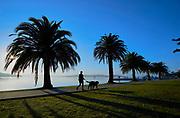 for Lake Macquarie Tourism