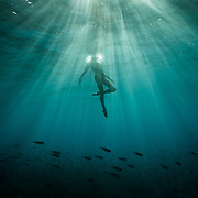 A female freediver swimming in rays of light and schools of fish of of Oahu, Hawaii.