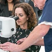 NLD/Amsterdam/20190206- Bezoek Mark Rutte aan het Skills Centre (AMC), Femke Halsema voert een oog operatie uit