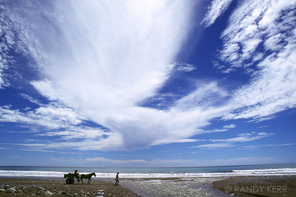 Horse cart along Corcovado beach
