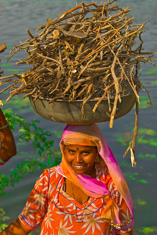 Women carrying wood on their heads, Rohet, Rajasthan, India