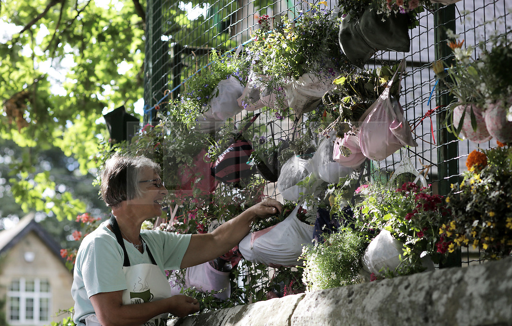 © Under licence to London News Pictures. 21/08/2016. Bras turned into hanging baskets by the ladies of Shotley WI, on display at Shotley Church Hall at Snods Edge in Northumberland, UK. Members of Shotley Womens Institute have re-cycled bras to make hanging baskets for the national WI hanging basket competition, which will be judged this coming bank holiday weekend. The bras are made up of some of their own and some donated by local women. Pictured is WI member Cathy Railton dead heading. Photo Credit: Stuart Boulton/LNP