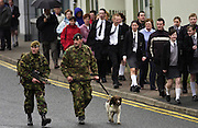 British troops with Springer Spaniel explosive sniffer dog on patrol in Omagh, Northern Ireland.