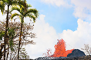 lava from Kilauea Volcano erupts from a fissure on Pohoiki Road, just outside of Leilani Estates subdivision, and next to the Puna Geothermal Ventures power plant, near Pahoa, Puna District, Hawaii Island ( the Big Island ), Hawaii, U.S.A.