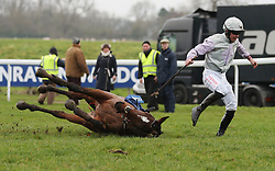 Famous Milly and Robert Dunne fall at the last in the Coral Future Champions Finale Juvenile Hurdle during Coral Welsh Grand National Day at Chepstow Racecourse, Chepstow.