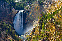 The Lower Falls of the Yellowstone River thunders over a cliff as seen from almost a mile away. At 309 feet high, this waterfall is nearly twice the height of Niagara Falls. It is the largest waterfall in the Rocky Mountains by volume, although the flow rate was a lot less in September when this was taken. The 24-mile long Grand Canyon of the Yellowstone starts here and in some places is over 1,000 feet deep. The canyon walls consist of a volcanic rock called rhyolite, and display a wide variety of colors. Hot springs and other geothermal features are scattered throughout the canyon along the river. If you look closely you can see a viewing platform just above the falls to the right.
