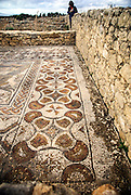Morocco, Roman Ruins at the Volubilis Archeological Site Mosaicc floor